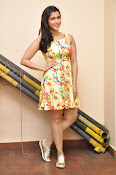 Jakkanna fame Mannara Chopra photos gallery-thumbnail-8