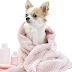 100% Cruelty Free Organic Dog Shampoo - Dog Lovers' Dream Product!