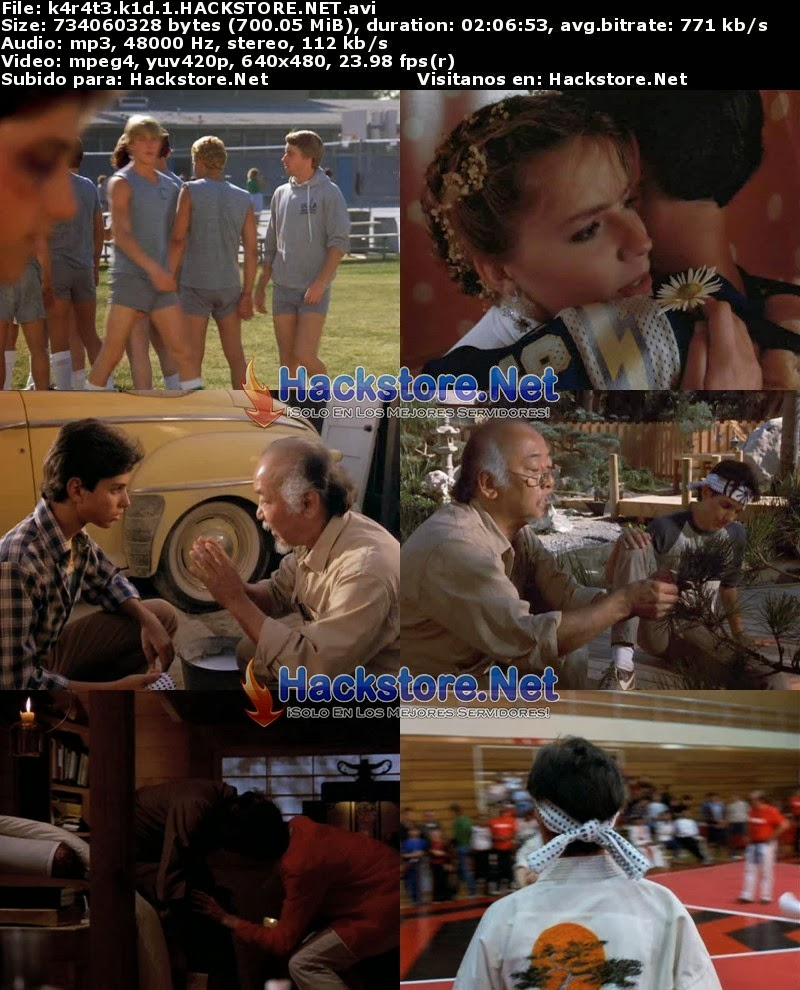 Karate Kid 1 (1984) Dvdrip Latino