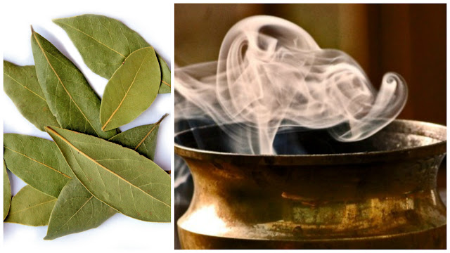 Burn-Bay-Leaves-In-Your-Home