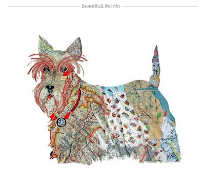 Collage de perro