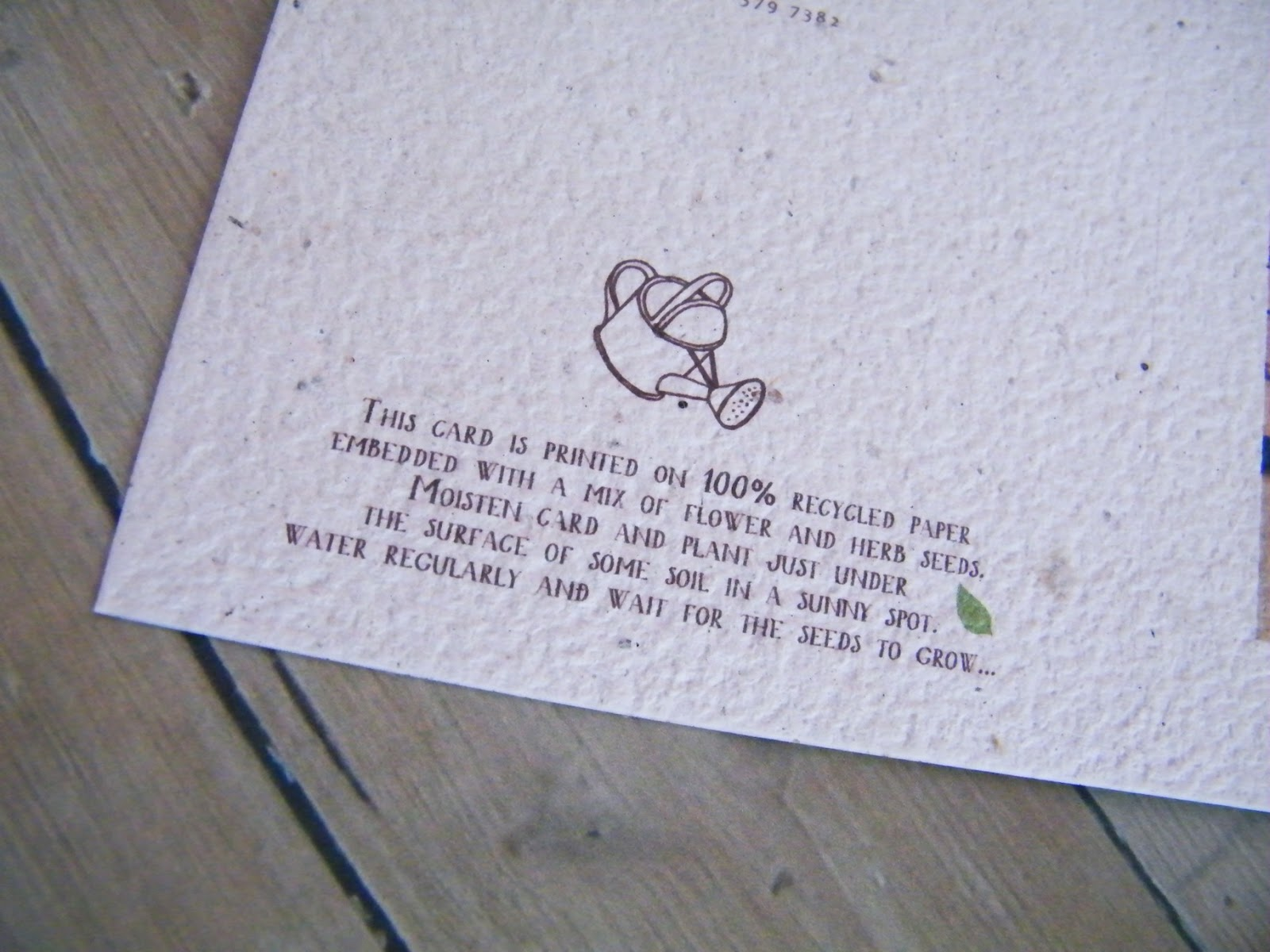 Plantable Wedding Favors - Go green with these plantable seed paper wedding invitations