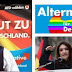 ¿Es realmente Alternativa por Alemania un partido racista, homófobo e islamófobo?
