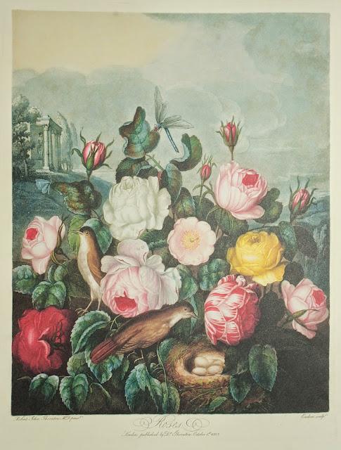 Vacheron Constantine Métiers D'art Florilège 9