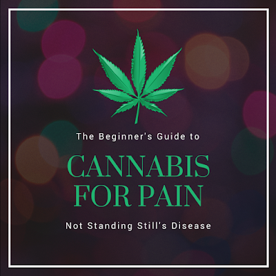 "background of photo is a dark background with various bokeh-style lights; a white outline is slightly inset from the corners; everything is middle-aligned; a green cannabis leaf with white text ""The Beginner's Guide to"" green text ""CANNABIS FOR PAIN"" white text ""Not Standing Still's Disease"""
