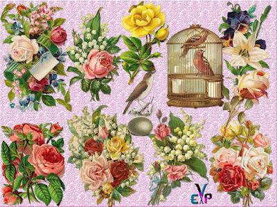 Clipart PNG vintage flowers cluster