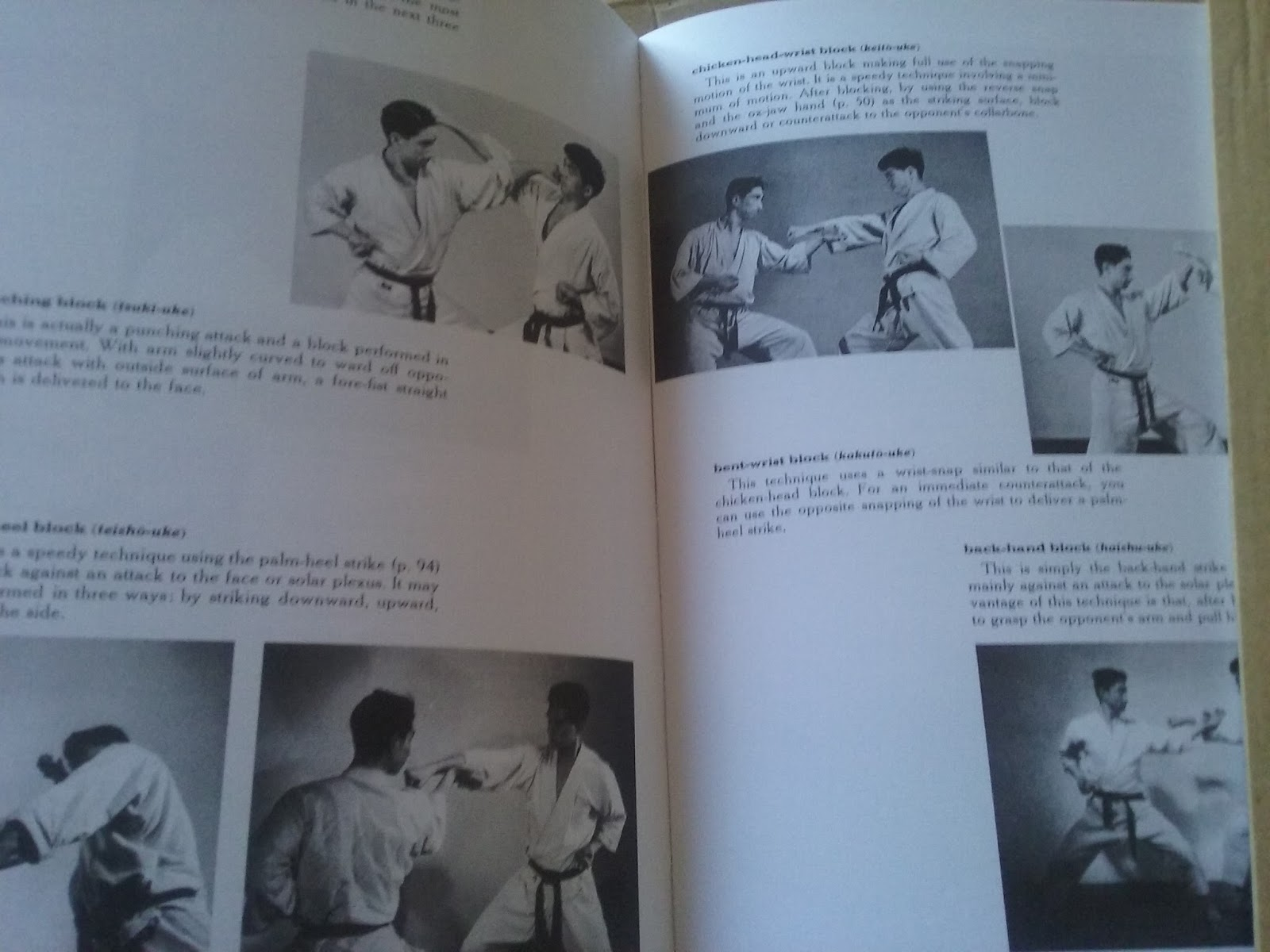 Crear Libro Virtual Libro Karate Quotthe Art Of Empty Hand Fighting Quot Virtual