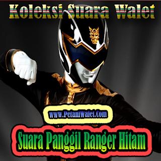 Suara Walet Panggil Ranger Hitam