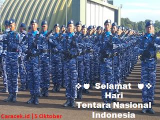 hari-tentara-nasional-indonesia-6