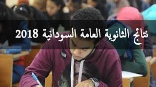 نتيجة الشهادة السودانية 2018 برقم الجلوس رابط الاستعلام عبر موقع وزارة التربية والتعليم السودانية