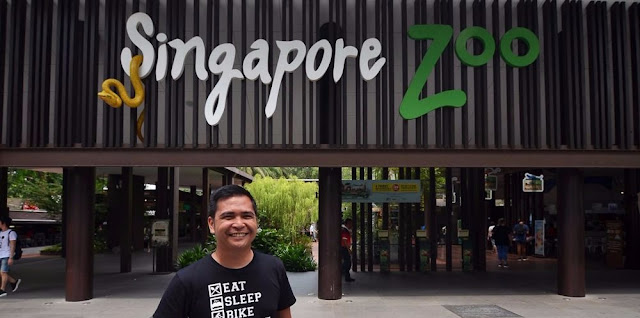 Travel Guide 2017 Singapore Zoo and Night Safari