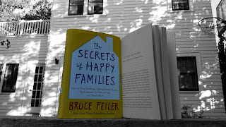 The Secrets Of Happy Families Book