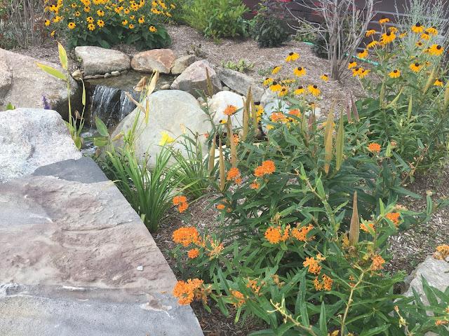 pollinator friendly landscaping around pondless waterfall