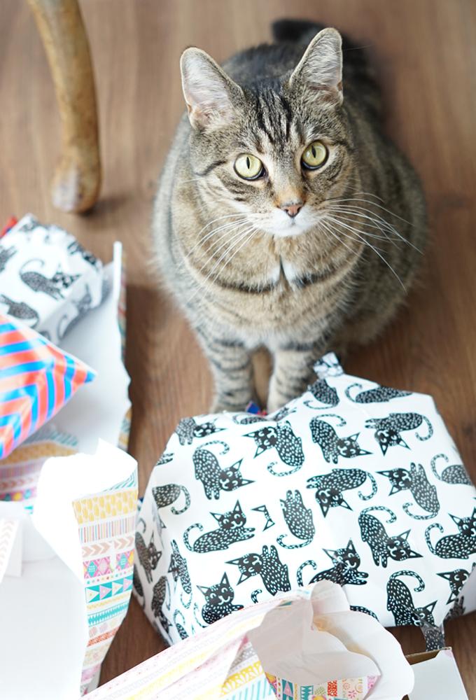 Aentschies Blog Die Besten Geschenkideen Für Katzen Und Katzenfreunde