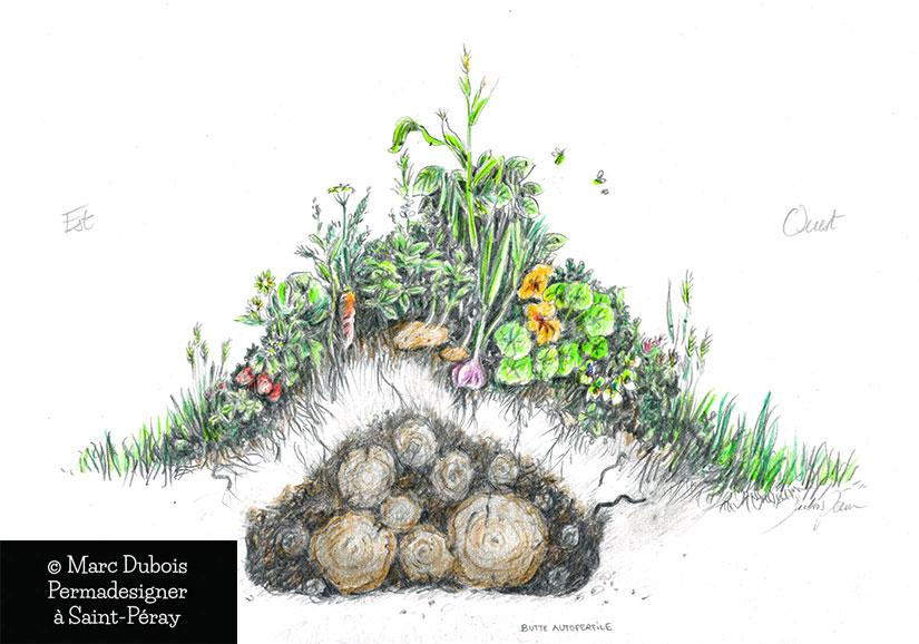Votre jardin naturel en permaculture mars 2017 for Culture permaculture
