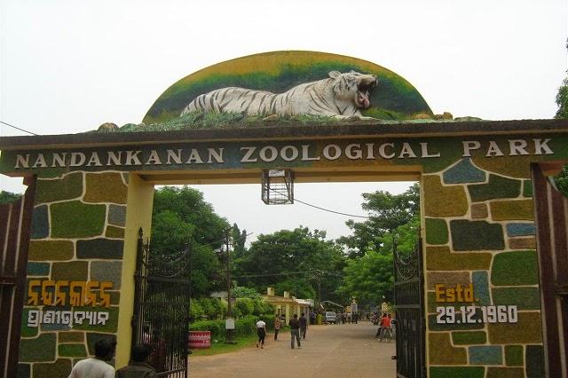 Nandankanan Zoological Park Bhubaneswar, Odisha