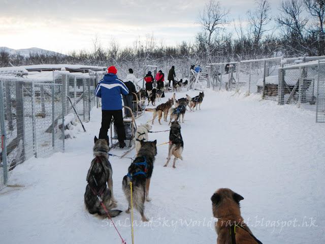 Abisko, dogsled,  阿比斯庫, 狗拉雪橇