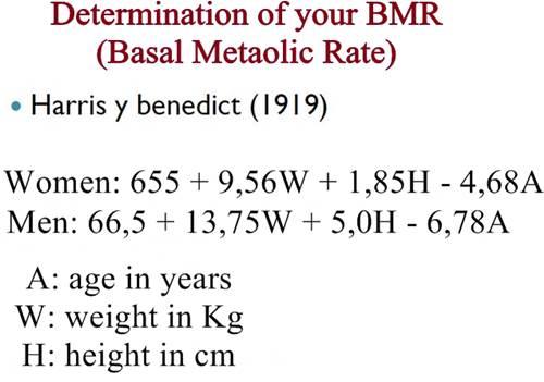 Harris benedict basal metabolic rate formula