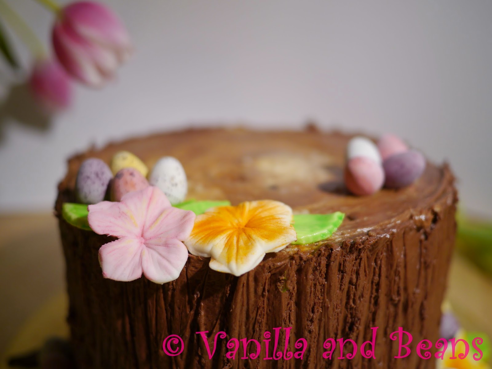 Our Easter Cake (Hidden bunny)