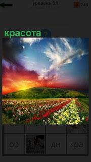 1100 слов красивый пейзаж под солнцем 21 уровень