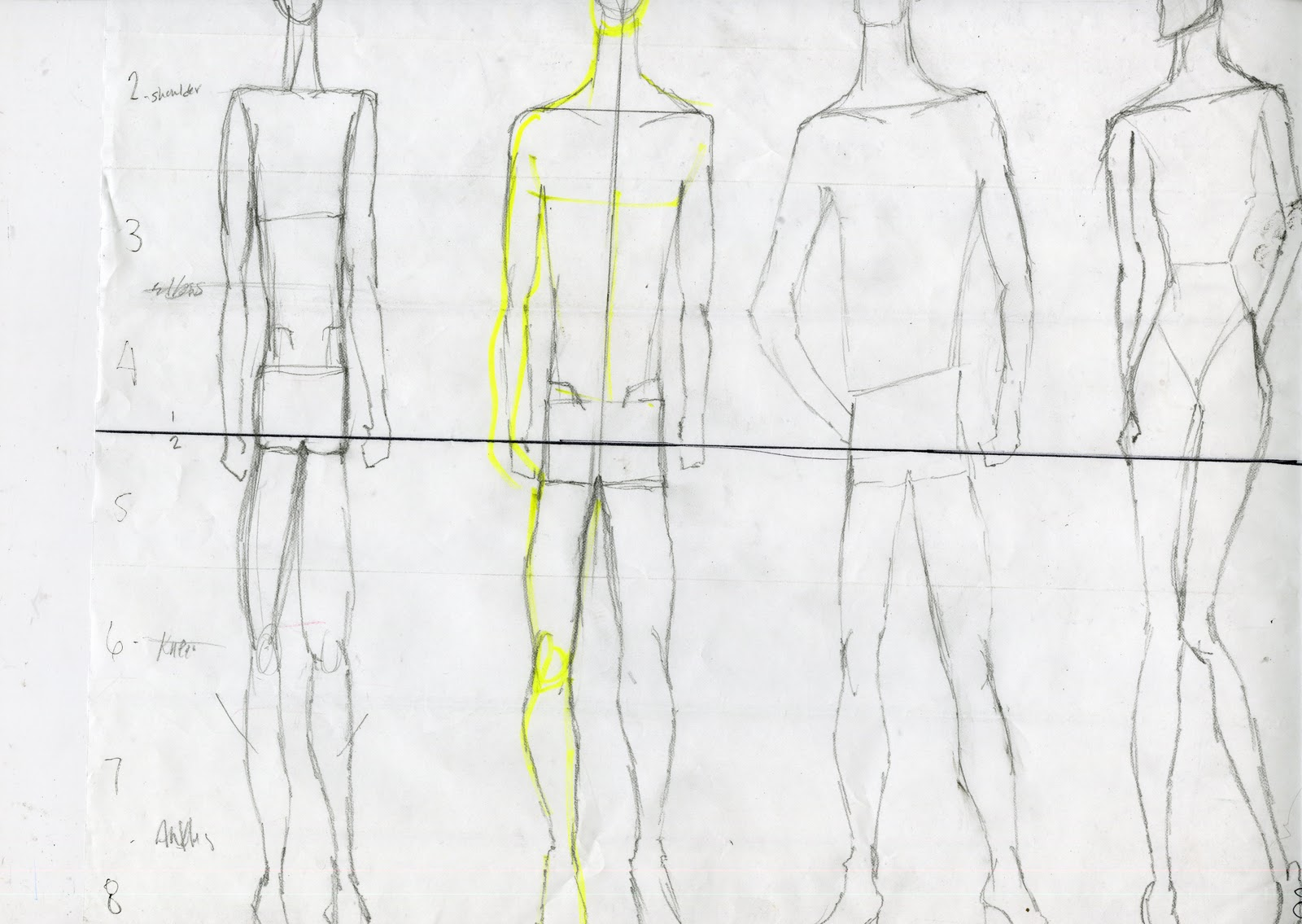 Human Proportions Male And Female