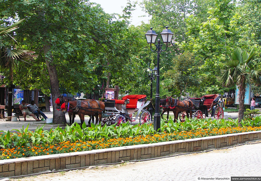 Конные экипажи в парке Созополя   Horse-drawn Carriages in the Park of Sozopol