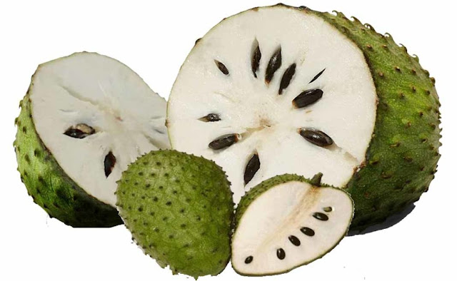 Aluguntugui is SOURSOP