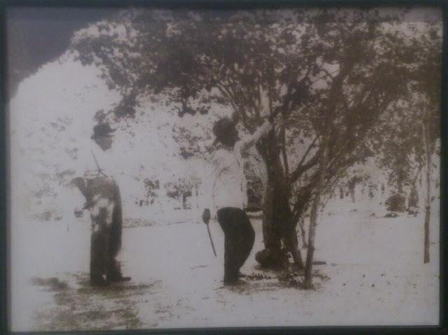 Alfonso López Pumarejo podando árboles frutales en Puerto Lopez