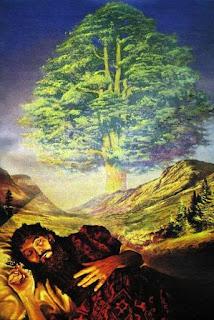 Significado de los Sueños: Soñar con Árboles