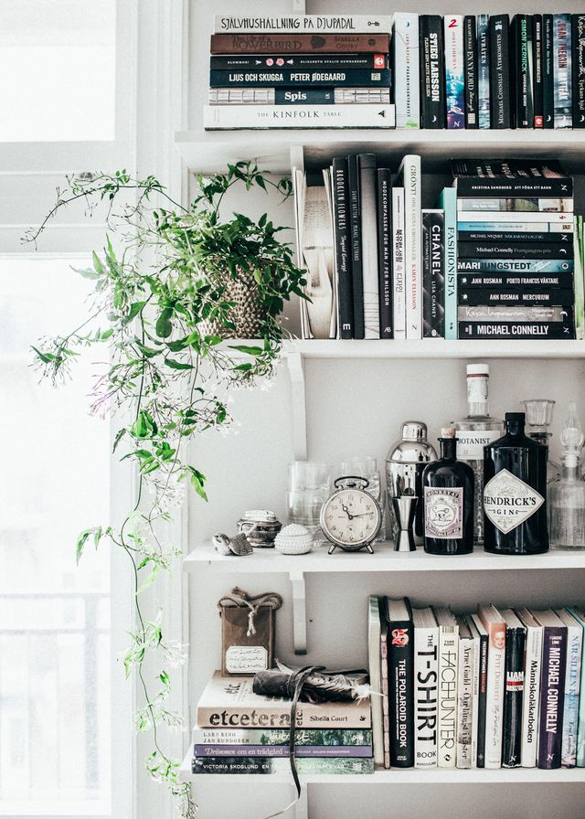 Shelfie with Plants