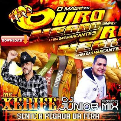 (MELODY2017) - MC XERIFE & DJ JUNIOR MIX - SENTE A PEGADA FERA
