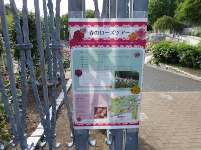 春のローズツアー 花博記念公園鶴見緑地のバラ園