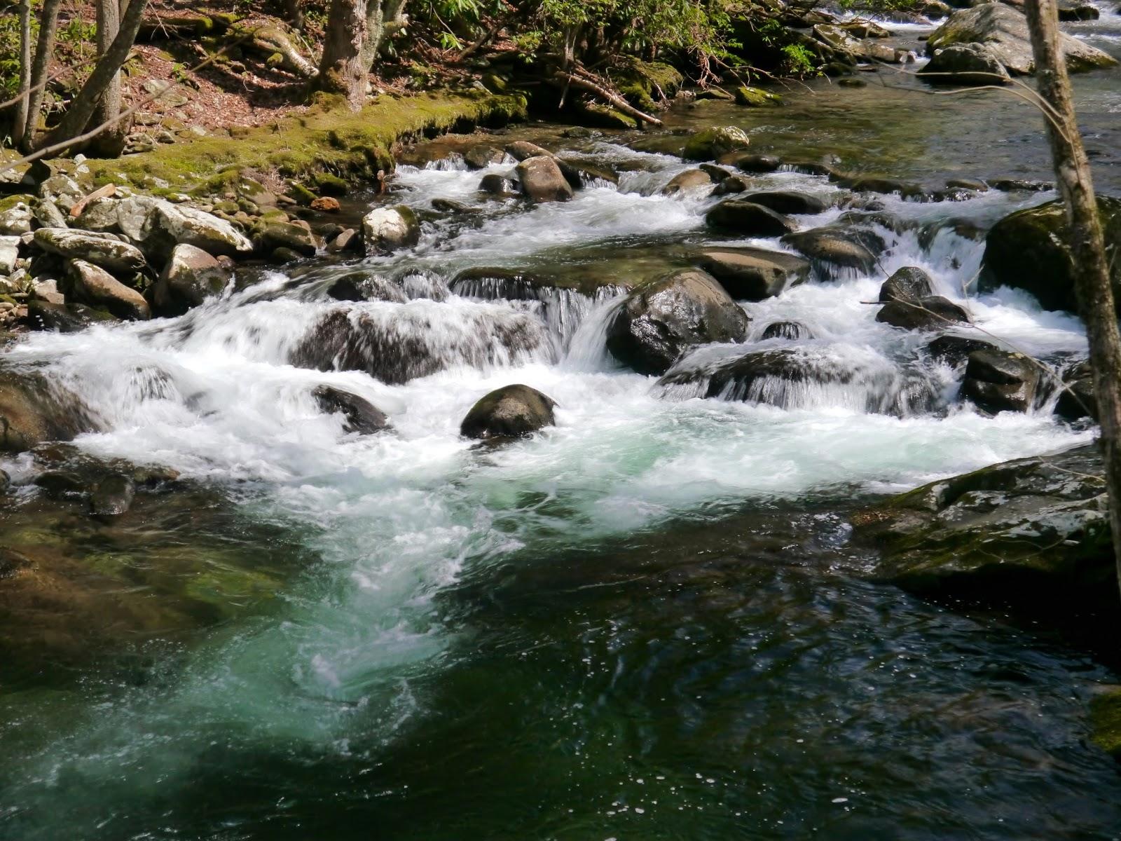 little river - photo #45