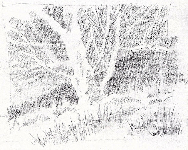 Pencil Sketch Tree Fast Drawing