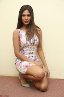 Nishi Ganda stunning cute in Flower Print short dress at Tick Tack Movie Press Meet March 2017 092.JPG