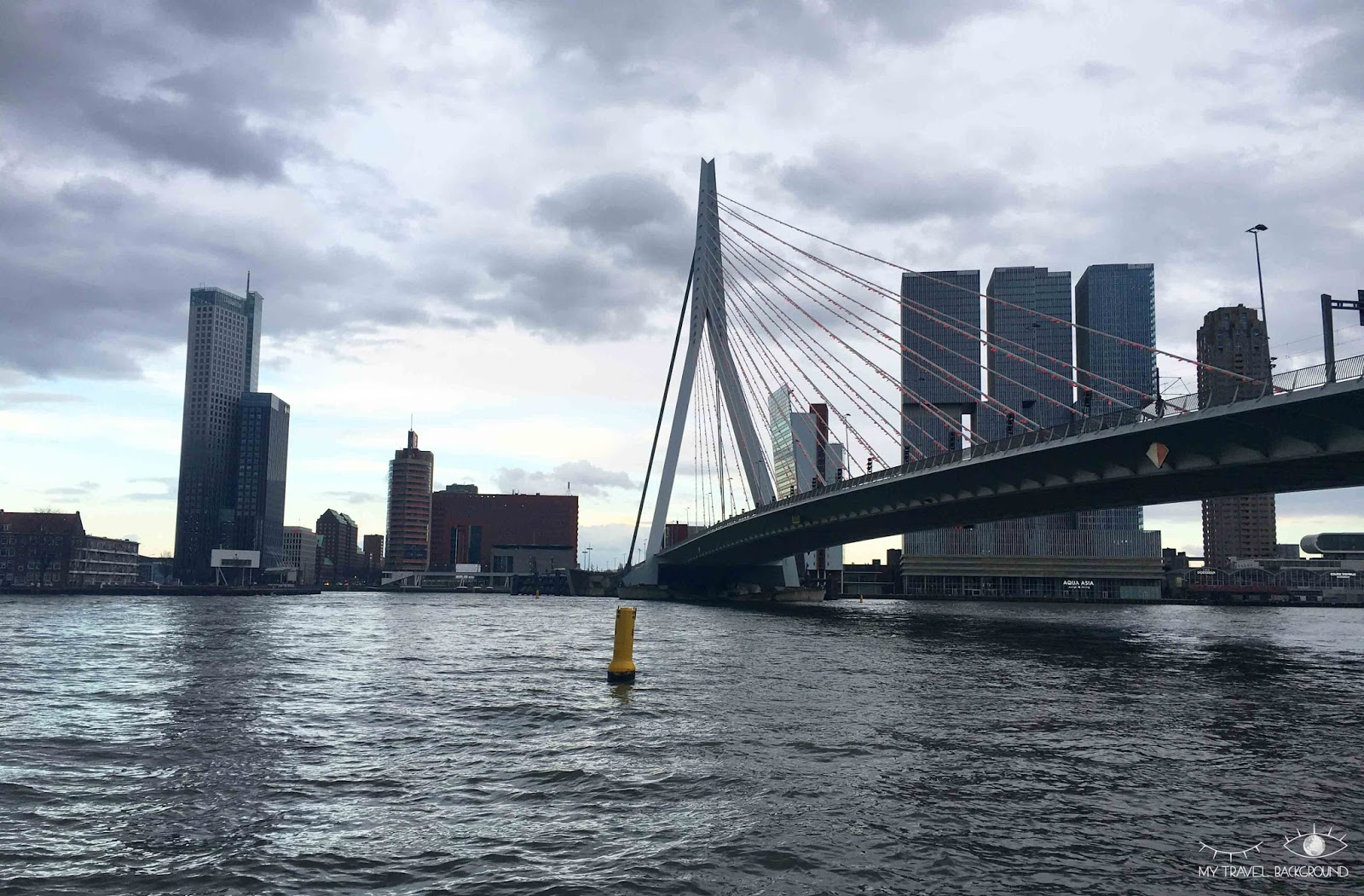 My Travel Background : pourquoi je suis tombée amoureuse de Rotterdam - Erasme