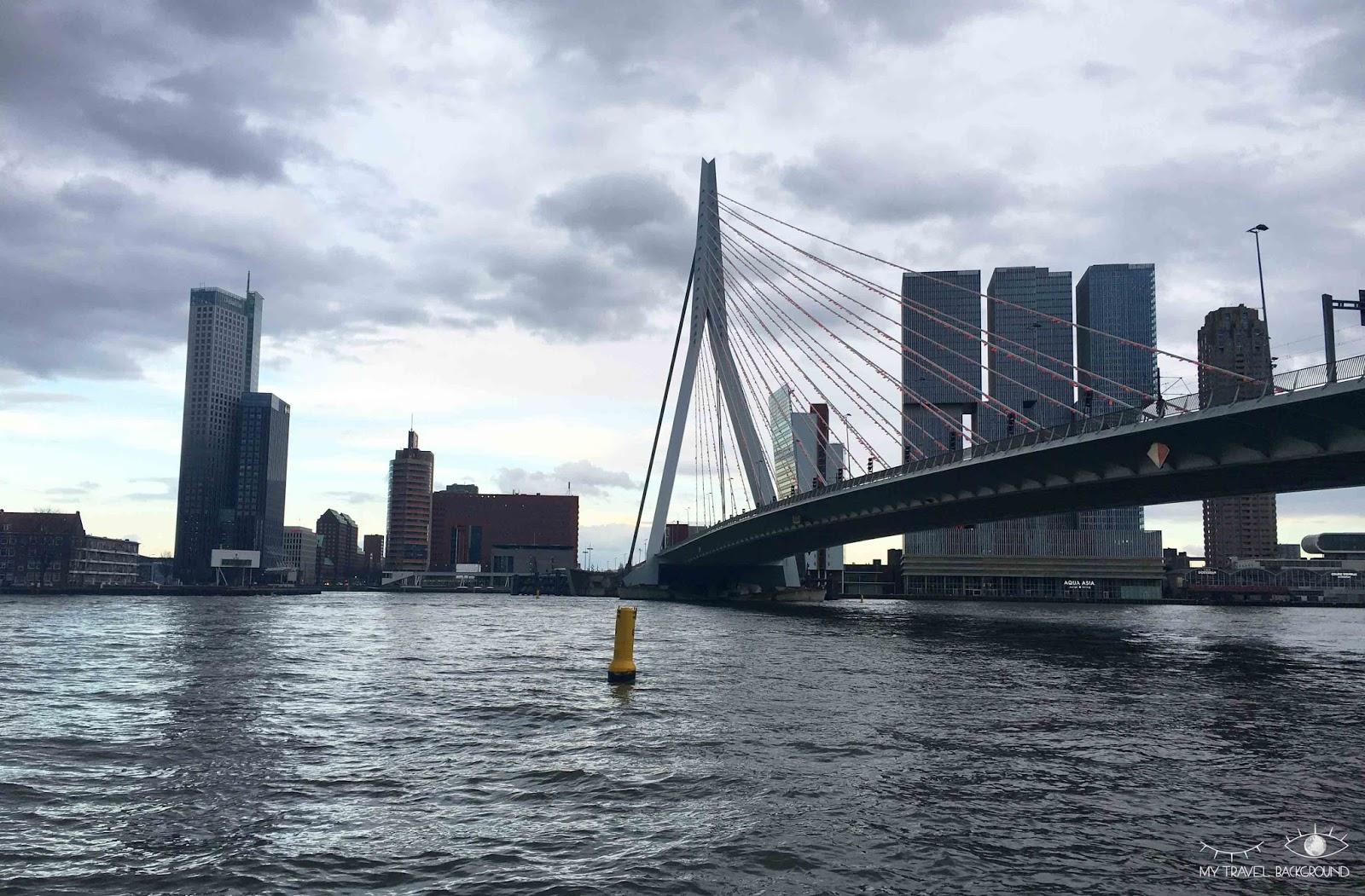 My Travel Background : pourquoi je suis tombée amoureuse de Rotterdam - Erasme