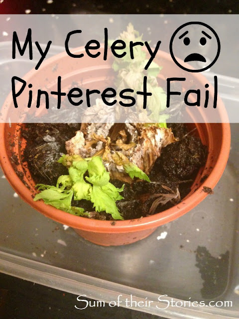 my celery pinterest fail