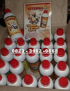 Jual Viterna Plus Nasa Di SIDOREJO NGANJUK 082334020868