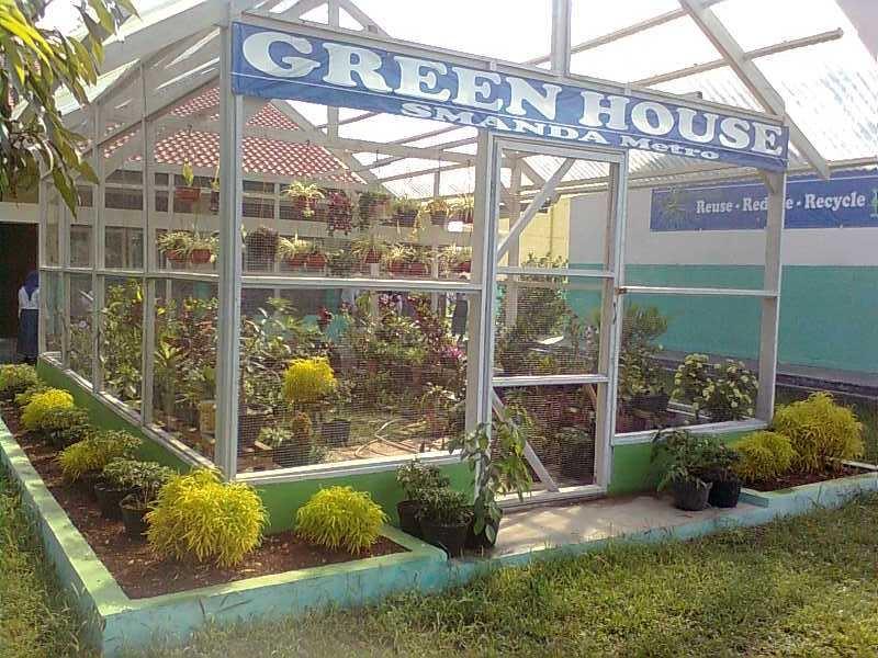 Cara Membuat Green House di Rumah Sederhana