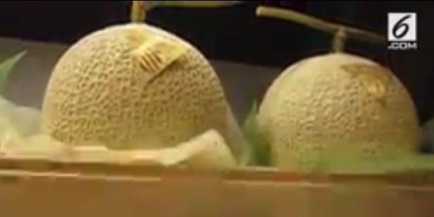 Buah Melon di Jepang Seharga Moil, Kok Bisa?