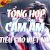 Tổng hợp cảm âm sáo trúc Việt Nam