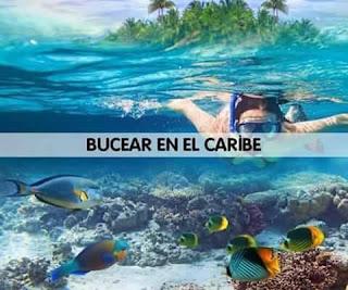 Bucear en el caribe