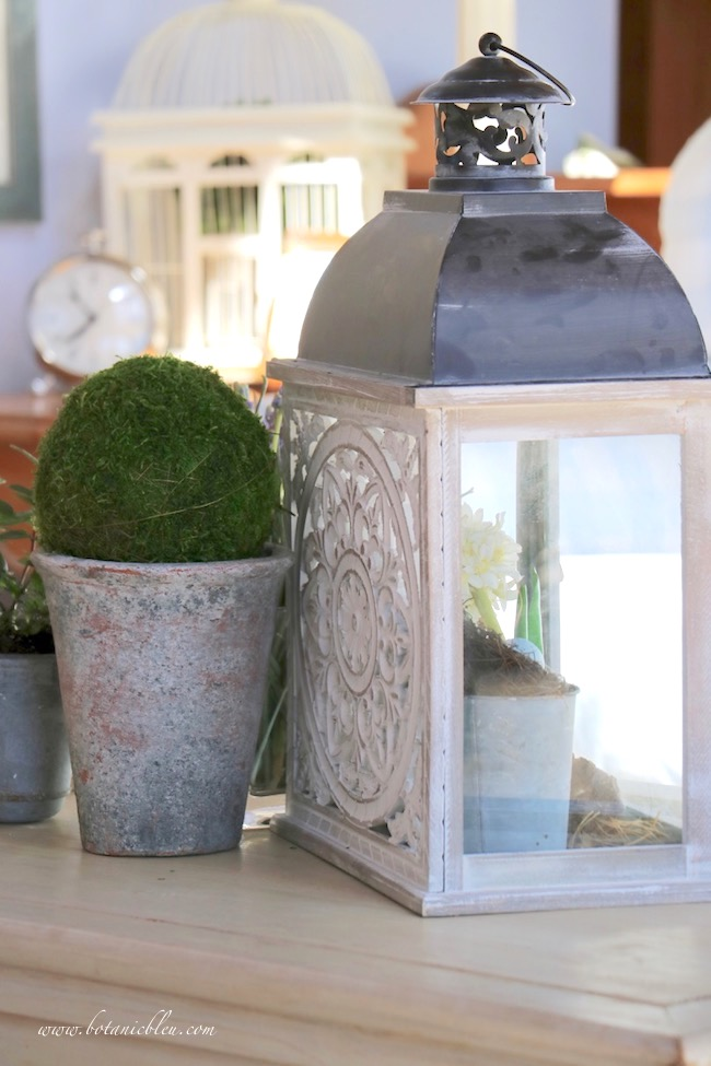Spring Vignette With French Design Lantern and Botanical Moss Ball