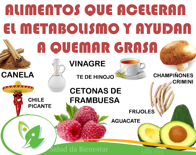 Top 6 maneras de comprar un dieta mediterránea usado