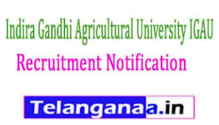 Indira Gandhi Agricultural University IGAU Recruitment Notification 2017