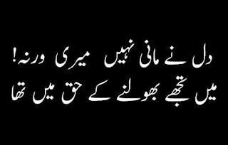 Dil nay maani nahi Meri Warna  Main tujhay bhoolnay kay haq main tha  Urdu Poetry Lovers 2 line Urdu Poetry, Sad Poetry, Bewafa Shayari,