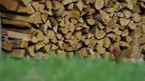 small business wood farming