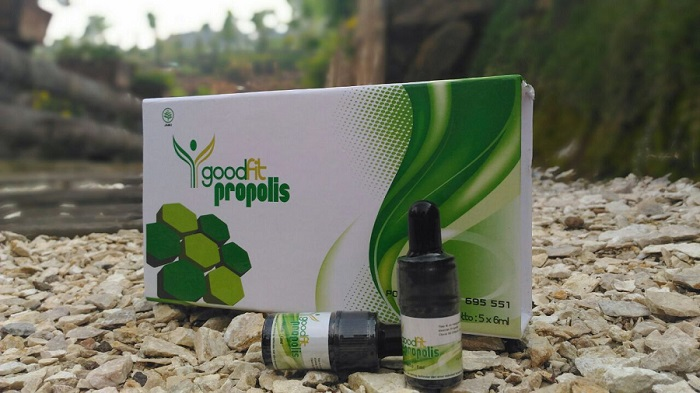 Obat Herbal Propolis Goodfit