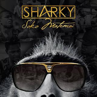 [feature]Sharky - Soko Matemai